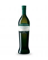 Vendita online vino classico Terre Cortesi Verdicchio Anfora Moncaro