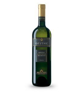 Vendita online vino piceno Ofithe Pecorino Moncaro
